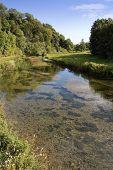Peaceful Riverside Landscape
