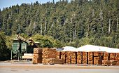 Boards stacked in yard of mountain lumber mill