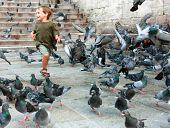 happy boy running among pigeons