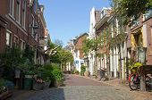 A quaint back alley in the center of Haarlem, the Netherlands, full of flowers and bicycles. As if t