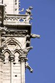 Gargoyles Of Notre Dame Of Paris