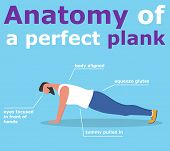 Anatomy Of Perfect Plank Banner. Fitness Man Doing Planking Exercise. Athlete Standing In Plank Posi poster