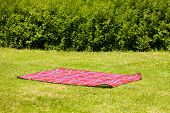 red picnic blanket, carpet, summer or spring concept shoot