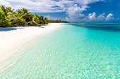 Maldives Paradise Beach. Perfect Tropical Island. Beautiful Palm Trees And Tropical Beach. Moody Blu poster
