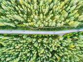 Aerial View Of A Country Road In The Forest. Beautiful Landscape. Clouds Over The Green Forest And R poster