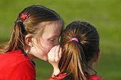zwei Mädchen sagen Geheimnisse im freien im Park