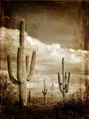 Wintage photograph of saguaro Cactus in Arizona with sky and Clouds