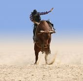 foto of bull-riding  - Cowboy Riding a Large Red Bull isolated with clipping path - JPG