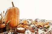 Happy Thanksgiving Concept. Beautiful Pumpkin, Candle Light, Fall Leaves, Berries, Nuts, Acorns, Cot poster