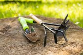 Gardening Tools. Hoe, Trowel On Wooden Stump In Sunny Day In Spring Garden Close Up. Hand Equipment  poster