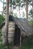 A toddy tappers' hut in the Sri Lankan jungle