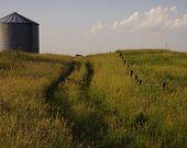Old Farm Trail