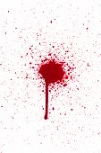 picture of ooze  - A high resolution image of a blood drip - JPG
