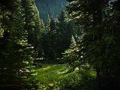 Crystal Lake 2