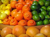 stock photo of tangelo  - A fruit display of brightly colored citrus fruits including limes tangelos oranges lemons and grapefruit - JPG