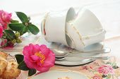 Camellias And Teacups