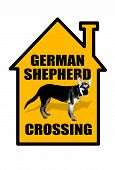 German Shepherd Crossing.