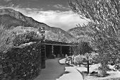 pic of anza  - This is a picture of the Anza Borrego state park in California in black and white - JPG