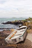 Dinghy On Rangitoto Island