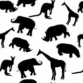 Seamless Animal Pattern poster