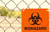 stock photo of chain link fence  - Biohazard sign attached to a chain link fence - JPG