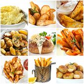 Collection of potato dishes.  Includes mashed, roast, wedges, fries, and baked.