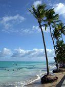 Tropical Beach With Palm-trees In Maragogi, Brazil