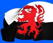 Flag Of Poitou, France.