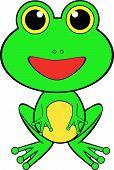 Cute Looking Frog