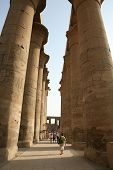 Huge Columns At Luxor Temple In Egypt.