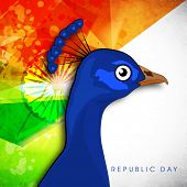 Happy Indian Republic Day concept with national bird peacock on national flag background.