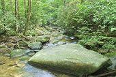 Carrick Creek