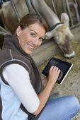 Veterinarian checking on herd's health in barn