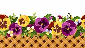 Horizontal seamless background with pansy flowers and wicker. Vector illustration.