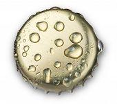 Beer Bottle Cap