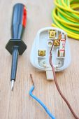 Electrical plug and wires