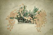 Dendrobium Lindleyi Vintage Postcard Effect