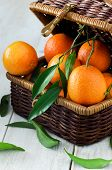 Tangerines In Rustic Basket