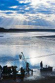 Fish Harvest On Svet Pond, Trebon