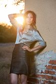 Elegant glamour woman wearing brown skirt and blouse outdoor in the park at sunset.