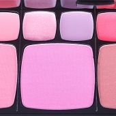 image of blush  - Make up blush palette close up shot - JPG