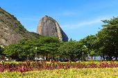 Mountain Sugarloaf With View Of Square General Tiburcio, Rio De Janeiro