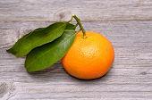Mandarin or tangerine fruit