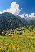 Trentino - Val Di Pejo, Italy