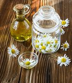Camomile Flowers In A Glass Jar
