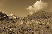 stock photo of hooker  - South Island landscape in sepia - JPG