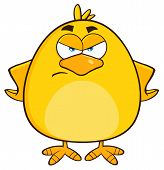 picture of angry bird  - Angry Yellow Chick Cartoon Character - JPG