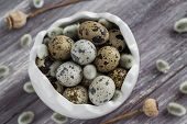 foto of quail  - Small quail eggs in a dish on a wooden table - JPG