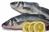image of bass fish  - Sea bass fish whit lemon and star anise on withe background - JPG