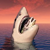 foto of great white shark  - Computer generated 3D illustration with a Great White Shark - JPG